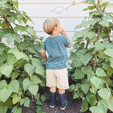 Ausgestattet mit dunkelblauen Gummistiefeln an den Füßensteht dieses Promi-Kind im Gemüsebeet und schaut bei den Bohnen nach dem Rechten. Es ist Liam, derSohn von Lauren Conrad und William Tell, der inbeigefarbenenShorts sowie türkisfarbenem T-Shirt das perfekte Outfit für den Garten trägt.