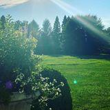 Auch der weitläufige Garten der Sängerin ist ein kleines Paradies: Grün, so weit das Auge reicht ...