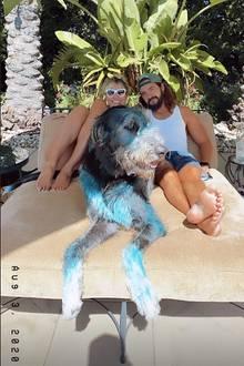 Wir sehen blau: Nanu, was ist denn mit Vierbeiner Anton passiert? Vielleicht wollte er Frauchen Heidi Klum beim Malen helfen und hat zu tief in den Farbtopf geschaut?