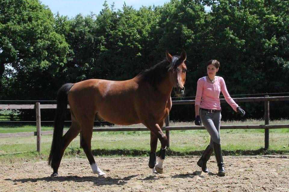 """Judith Hildebrandt: """"Pferde sind meine Leidenschaft!"""""""