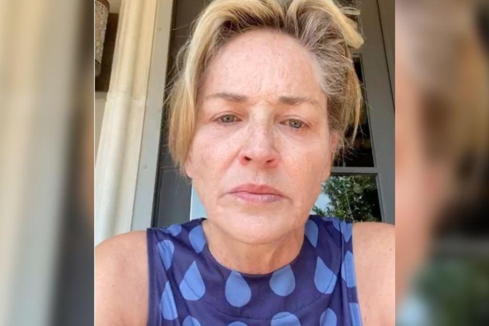 Sharon Stone: Wut auf Trump
