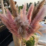 Ein besonderer Hingucker: Die pinkfarbenen Gräser in übergroßen Vasen.