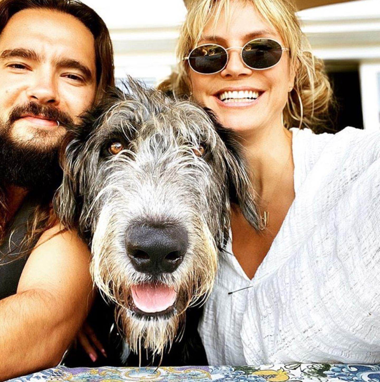 25. August 2020  Hund Anton ist fester Bestandteil vonFamilie Klum-Kaulitz und schon auf so einigen Schnappschüssen verewigt worden.Auch auf dem Pärchen-Porträt sichert sich der Vierbeiner den schönsten Platz zwischen Tom und Heidi - eben mittendrin statt nur dabei!