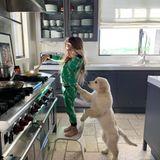 Was Kourtney Kardashian glücklich macht? Wenn ihr jüngster Sohn Reign ihr morgens Frühstück macht. Was ein niedlicher Anblick!