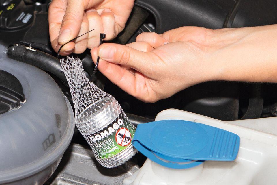 So einfach lässt sich GOMAGO im Auto anbringen.