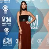 """Lily Aldridge setzt ihre sexy langen Beine auf dem """"blauen"""" Teppich den""""ACM""""-Awards in Szene. Das trägerlose Kleid ist von Proenza Schouler, das mit dem passenden Halsschmuck daher kommt."""