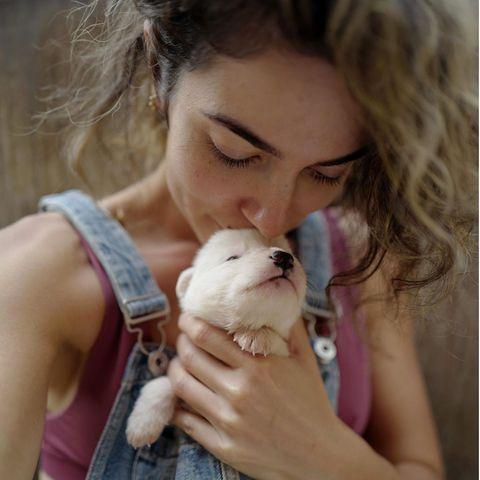 """""""Twilight""""-Star Nikki Reed kümmert sich derzeit als Pflegemama um einen Wurf weißer Fellknäuel, und dieser Kleine, der in den ersten Tage extra viel Aufmerksamkeit brauchte, hates ihr ganz besonders angetan. Das können wir sehr gut verstehen!"""