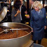 Bevor der Kaffee in der Tasse von Herzogin Camilla landen kann, hat die Kaffeekirsche bis zum endgültigen Verzehr noch einen langen Weg vor sich. Hier bestaunt die Herzogin gerade die frisch gerösteten Bohnen.