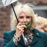 Herzogin Camilla begleitet ihren Mann. Das Wetter ist den Royals nicht hold, es regnet. Maske und Schirm gleichzeitig zu händeln - gar nicht so einfach!