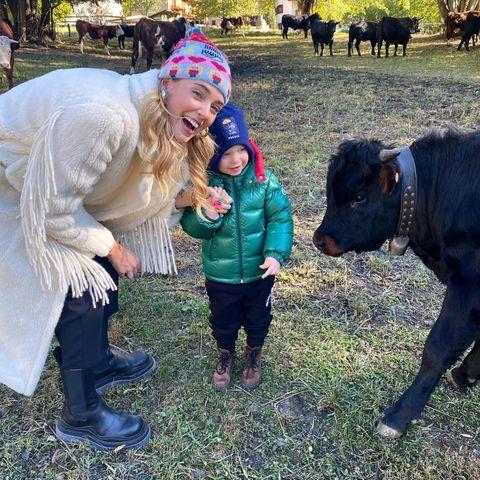 """Das """"Auberge De La Maison""""-Hotel hält sich auch Kühe, die der kleine Leo jetzt mit Mama Chiara Ferragni besuchen darf. Noch etwas skeptisch begutachtet er zunächst sein Gegenüber."""