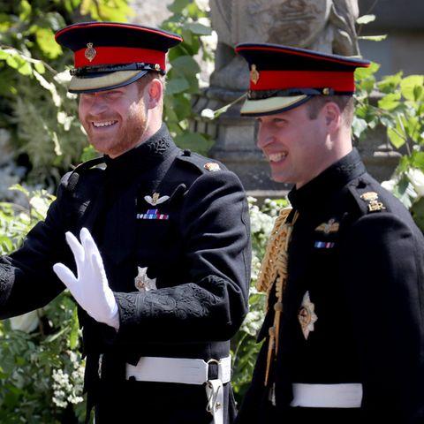 Prinz Harry und Prinz William