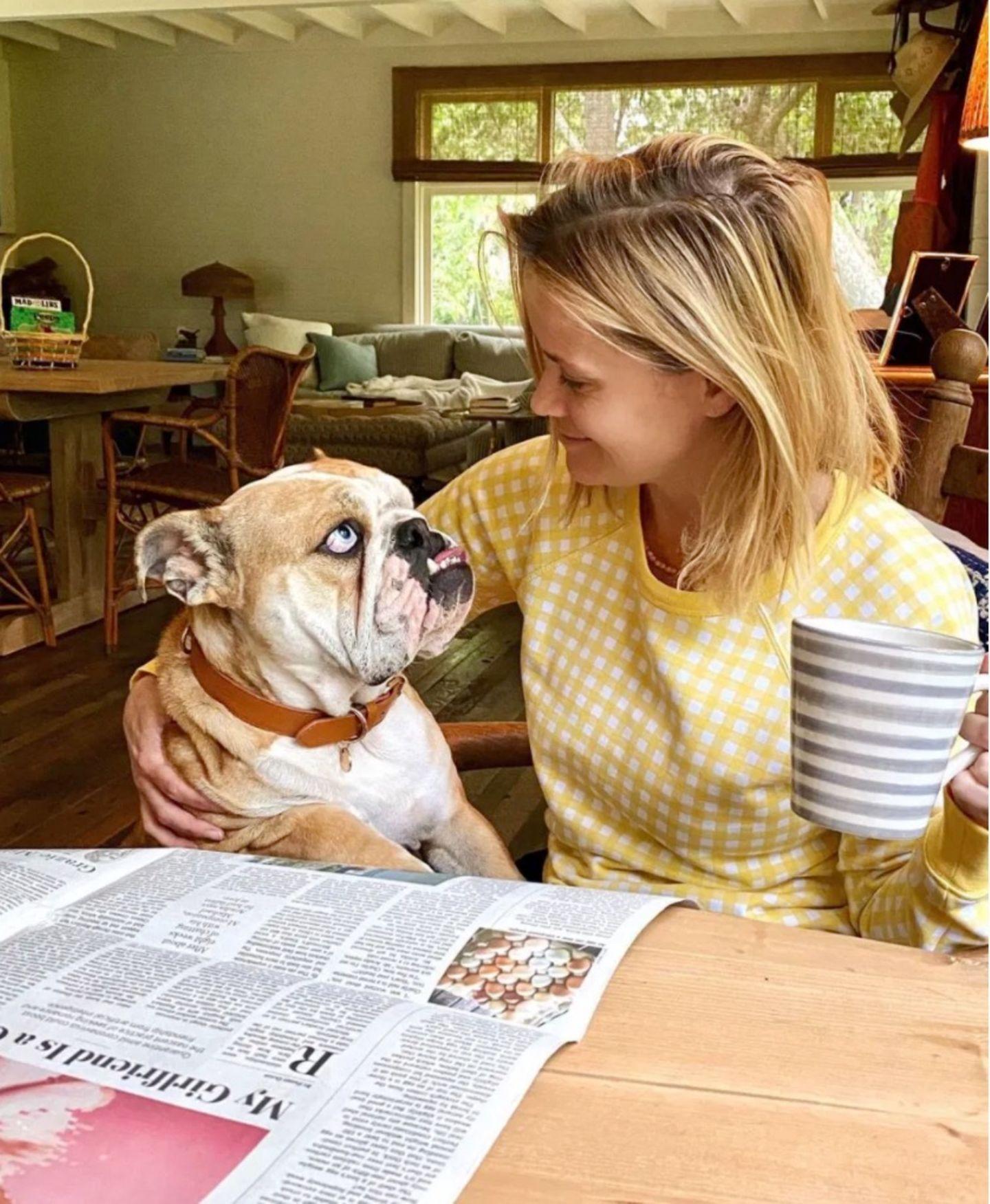 Schauspielerin Reese Witherspoon lebt zusammen mit ihrem Mann Jim Toth und ihren drei Kindern Ava, Deacon und Tennesseein einem gemütlich wirkendenHaus in Nashville. Auf Instagram teilt die 44-Jährige Schnappschüsse aus ihrem Familienalltag, auf denen wir auch einen Eindruck ihres imposanten Anwesens bekommen. So gewährt uns die hübsche Blondine einen Blick auf ihrenKüchentisch; im Hintergrund ist außerdem ein gemütliches Sofa zu erkennen. Doch Reese hat gerade nur Augen für ihre Bulldogge Lou.