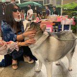 """Nicht nur ihre eigenen, auch fremde Hundeerhalten von Prinzessin Sirivannavari eine Kuscheleinheit. Die thailändische Prinzessin ist so begeistert von Hunden, dass sie2018 sogar ein Buch über ihre vierbeinigen Begleiter veröffentlichte: """"The Princess' Dog Diary"""". Damit war sie übrigens nicht die erste in ihrer Familie, auch ihr Großvater König Bhumibol hat einst ein Buch über seine Hunde geschrieben."""