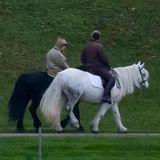 19. November 2020  Im Park von Schloss Windsor macht Queen Elizabeth einen Tag vor ihrem 73. Hochzeitstag einen Ausritt mitmit Stallmeister Terry Pendry.