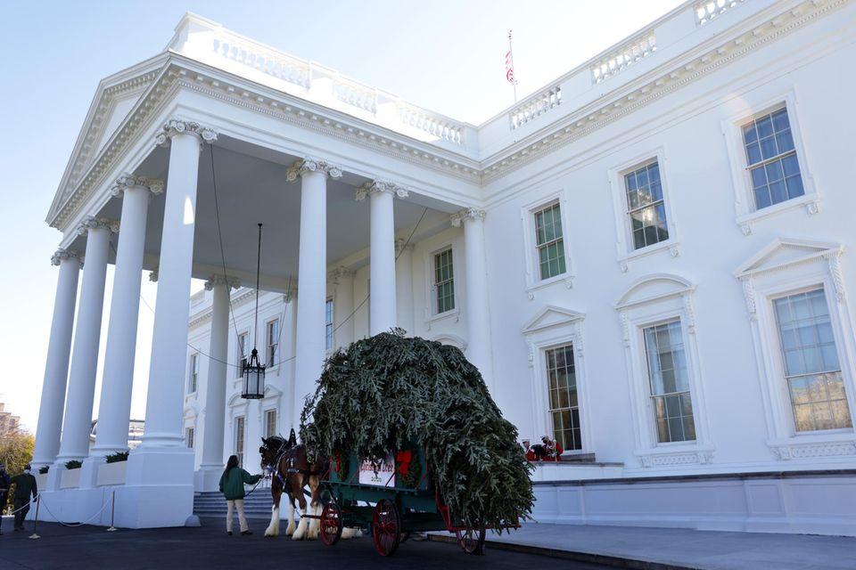 Vor dem Nordportal des Weißen Hauses warten die Kutscher auf die First Lady.