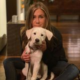 Kuschelig geht es bei Jennifer Aniston und ihrem niedlichen Vierbeiner zu.