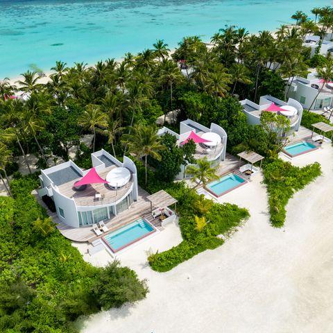 Die Malediven bieten ein Farbspektakel, das seinesgleichen sucht.