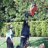 Denn der Spaziergang wird richtig actionreich. Auf dem Weg erblickt Samuel eine Schaukel, die vermutlich an einem Baum hängt. Papa Ben weiß direkt, was er zu tun hat und schubst sein jüngstes Kind ordentlich an.