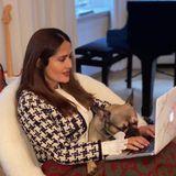 Hundeliebhaberin Salma Hayek kann auch während der Arbeit nicht auf ihren tierischen Freund verzichten. So darf Bee ebenfalls mit am Zoom-Meeting teilnehmen. Die französische Bulldogge ist Anfang des Jahres bei der Schauspielerin eingezogen.