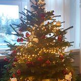 Leni Klum beweist mit ihrer Weihnachtsdekoration wirklich Humor! Passend zum recht bescheidenen Jahr 2020 hängen neben roten Kugeln auch solche in Form von Klopapierrollen an ihrem Tannenbaum.
