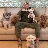 """""""Who let the dogs out?"""" Falls sich einer von Orlando Blooms Instagram-Fans fragt, wer die Hunde rausgelassen hat, er war's!"""