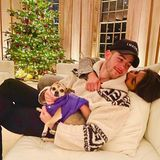 Nick Jonas und Priyanka Chopra machen es sich auf dem Sofa eingekuschelt vor dem festlich geschmückten Weihnachtsbaum gemütlich.