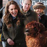 """Es ist ein tierisch toller Tag für Herzogin Catherine und die anwesenden Kids: Catherine stattet dem Erlebnisbauernhof """"Ark Open Farm"""" in Newtownards bei Belfast einen überraschenden Besuch ab. Von dem Alpaka ist die Herzogin besonders angetan."""
