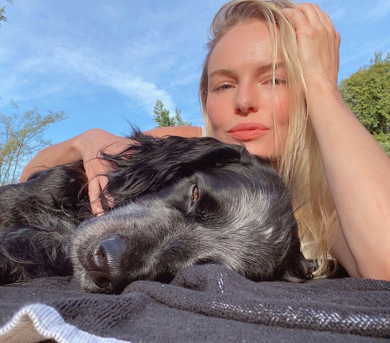 """Die Augen werden immer kleiner, die Atmung immer flacher: """"Hach, ist das schön, wenn Herrchen Kate Bosworth mir den Rücken krault"""", denkt sich der Hund der Schauspielerin sicherlich. So sieht eben wahre Tierliebe aus."""