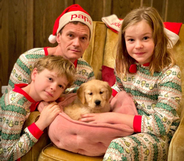 """Da war die Freude sicherlich groß! Am Weihnachtsmorgen durften die Kinder von Neil Patrick Harris einen Karton öffnen, indem sich dieser putzige Golden-Retriever-Welpe Namens Ella versteckt hat. Seitdem stellt die """"neugierige und tollpatschige"""" Hundedame das Familienleben auf den Kopf, offenbart der Schauspieler auf Instagram."""