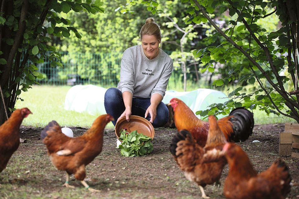 Judith Rakers hat13 Hühner.