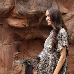 """Wie süß! Im """"Wildlife Zoo"""" bekommt Herzogin Meghans wächsernes Ebenbild jede Menge Zuneigung von einem Känguru. """"Wir freuen uns sehr über die Neuigkeiten und hätten uns keinen besseren Weg vorstellen können, unsere Glückwünsche in Form von Känguru-Küssen zu senden"""", sagtder Sprecher von Madame Tussauds in Sydney."""