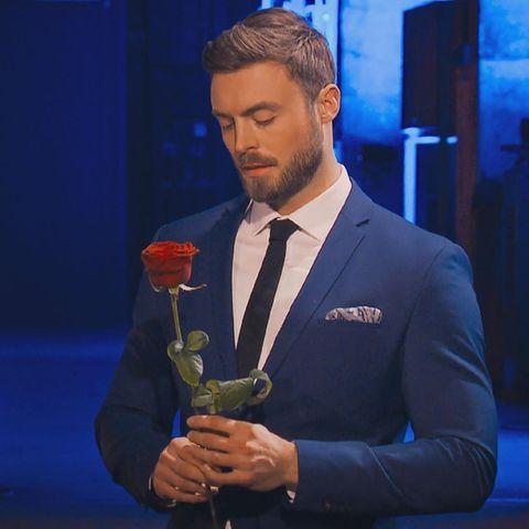 """""""Der Bachelor"""" 2021: Niko Griesert"""