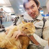 """""""He is just chill"""": Jerry O'Connell kann mit seinem Kater Captain ganz entspannt auf Reisen gehen."""