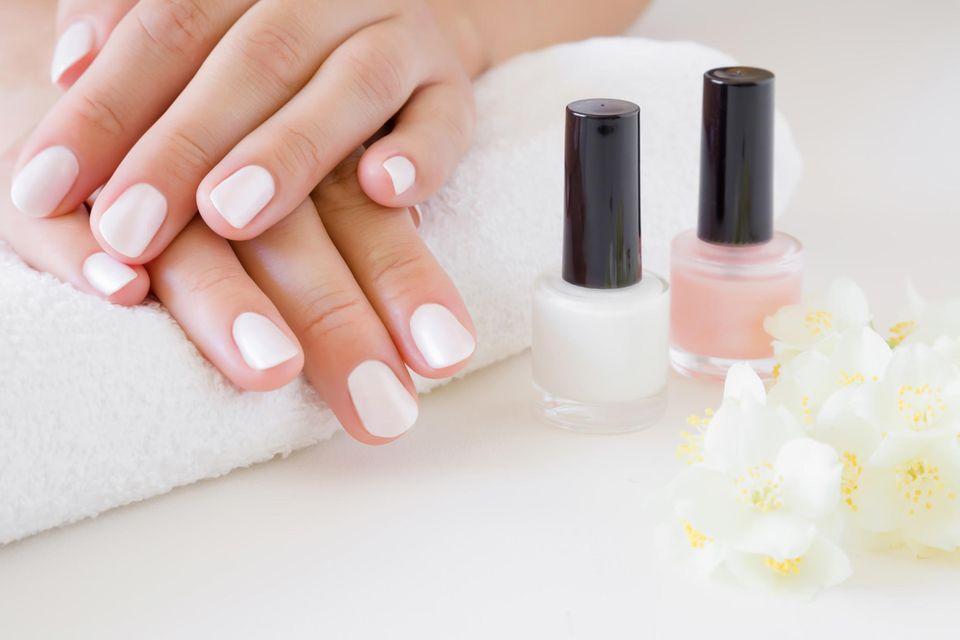 Gel-Nagellack-Test: Drei Produkte im Vergleich, frische Maniküre, weiß lackierte Fingernägel