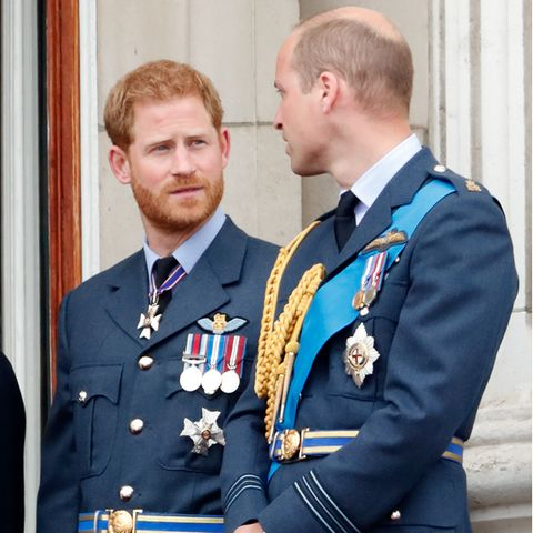Prinz Harry und Prinz William