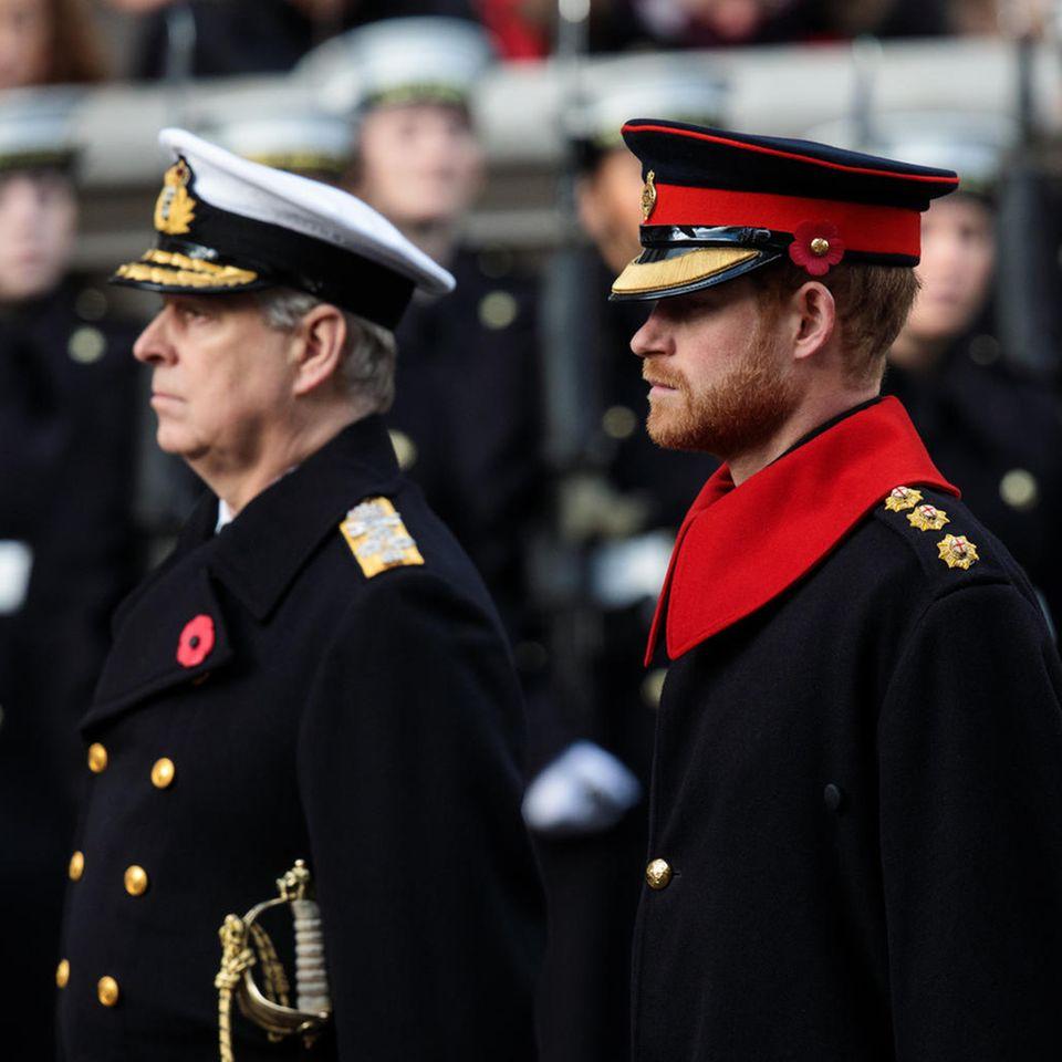 Prinz Andrew und Prinz Harry