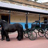 Auch Prinz Philip Kutsche mit den PonysBalmoral Nevis und Notlaw Storm wird Teil der Prozession sein.