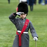 Ein kleiner, trauriger Soldat mit Bärenfellmütze salutiert.
