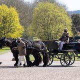 Philips Kutsche und seine Ponys sind ebenfalls auf dem Weg zum Schloss.