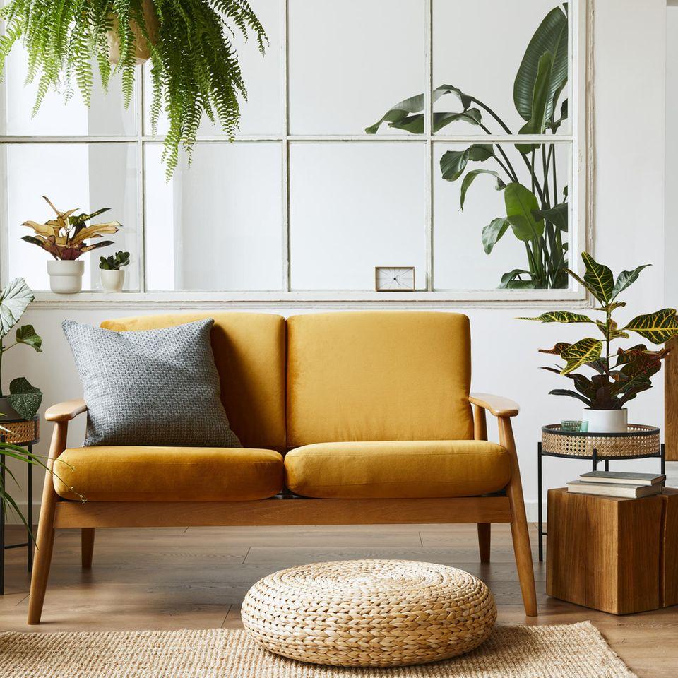 Wohnzimmer mit gelbem Sofa und Grünpflanzen