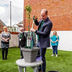 Zum erfolgreichen Abschluss seines Termins darf Prinz William einen Apfelbaum für dasBrighter Futures Projekt pflanzen. Die Gemeindemitglieder freuen sich über die tatkräftige Mitarbeit des britischen Royals.