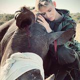 Zum Schutz der Wildtiere werden mahnende Fotos mit Fürstin Charlène veröffentlicht. Dieses zeigt sie bekümmert an ein betäubtes Nashornlehnend: Ihmmusste vorsichtig das Horn entfernt werden, bevor es Wilderer tun würden. Bedeutende Aufnahmen, die die Wichtigkeit der Tierschutzarbeit verdeutlichen.