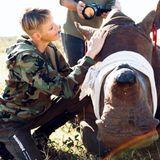 21. Mai 2021  Fürstin Charlène hilft Tierschützern während ihrer Reise durch Afrika dabei, einNashorn zu versorgen. Fotos zeigen sie neben dem Koloss kniend: Mit liebevollen Berührungen und Worten scheint sie dem Nashorn gut zuzureden und es beruhigen zu wollen. Im Kampf gegen Wilderer steht sie mit an dervorderstenFront.