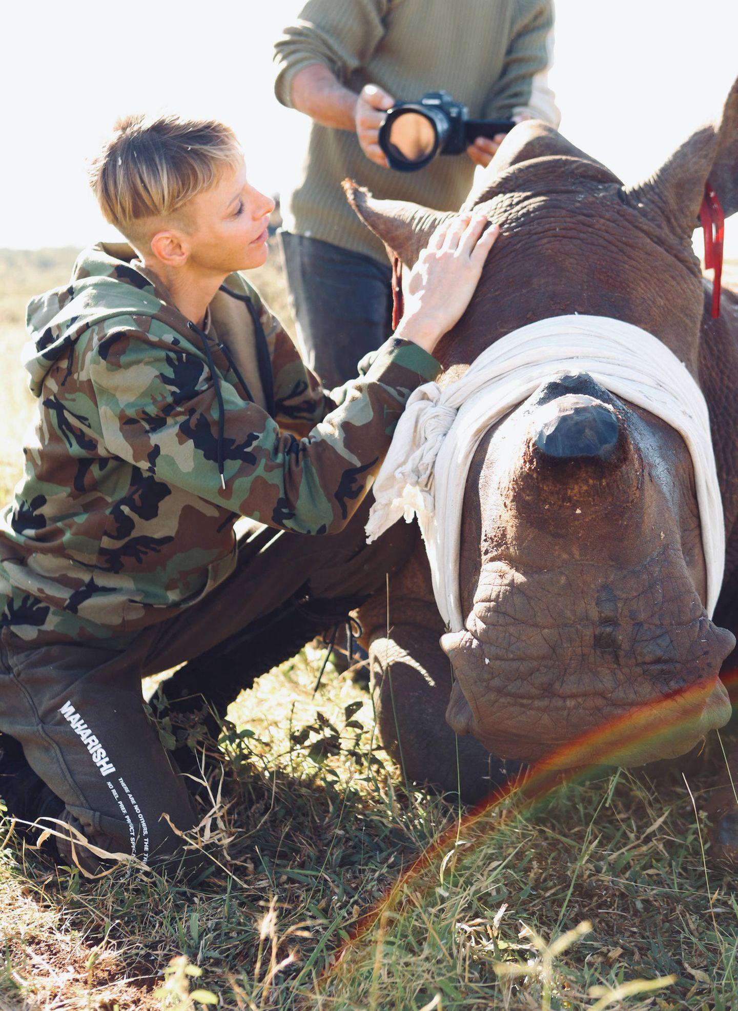 10. Mai 2021  Ein Herz für Tiere: Fürstin Charlène hilft Tierschützern ein Nashorn zu versorgen. Das Bild wurde während ihrer Afrika-Reise im Rahmen einer Mission zum Schutz der Wildtiere in der Provinz KwaZulu Natal inSüdafrika aufgenommen.