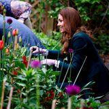 27. Mai 2021  An Tag sieben ihrer Schottlandreise stehen noch einige Termine für Herzogin Catherine und Prinz William auf dem Plan.  Unter anderembesuchen sie denStarbank Park in Edinburgh. Hier legt die Herzogin selbst Hand an und hilft beim bepflanzen der Beete.