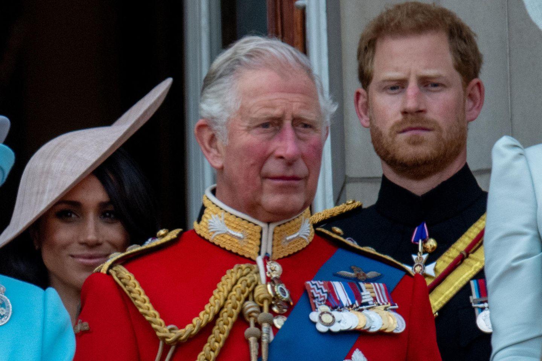 Herzogin Meghan, Prinz Charles und Prinz Harry