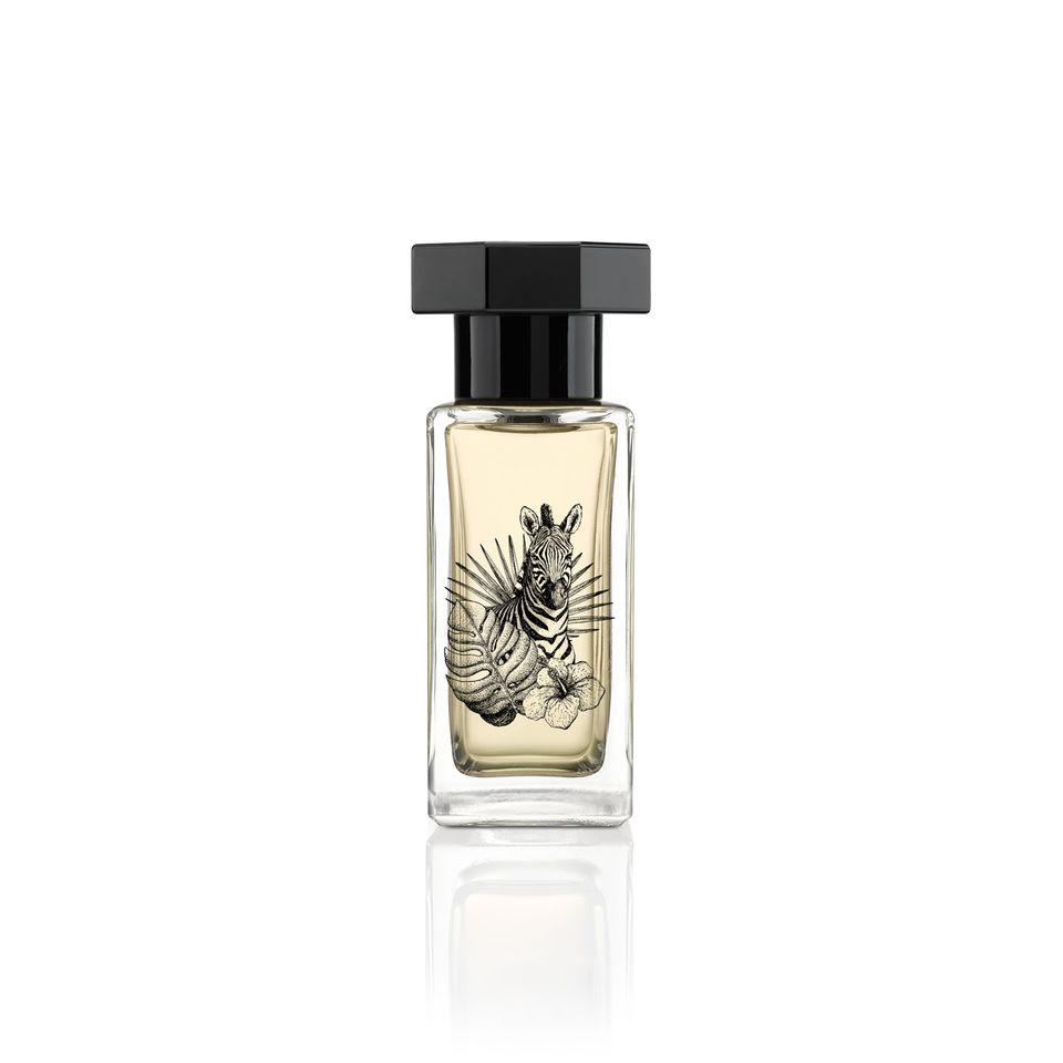 """Sie sind noch auf der Suche nach einem perfekten Sommerduft? Dann hätten wir hier etwas. Denn dieser Unisexduft eröffnet mit den herb-zitrischen Noten der Bergamotte. In der Herznote mischt sich der edle Duft der Iris mit blühenden Narzissen. Ein Hauch würzigen Kardamoms ergänzt die floralen Noten und in der warmen Basisnote entfaltet Zedernholz sein sinnliches, leicht süßliches Aroma. """"Eau de Parfum Spray Theria"""" von Le Couvent Maison de Parfum, 50 ml kosten ca. 50 Euro."""