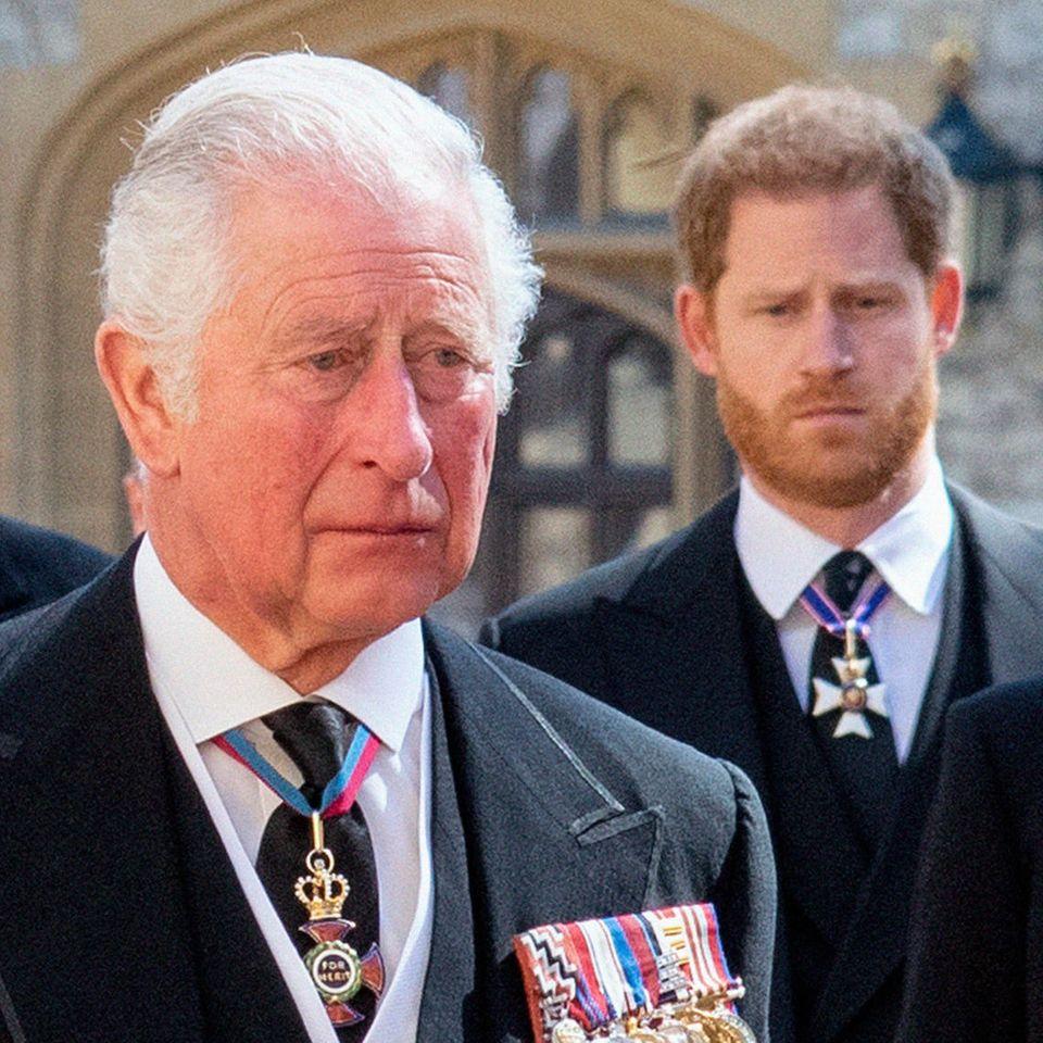 Prinz Charles und Prinz Harry