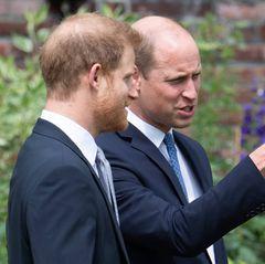 Das Treffen zwischen Prinz Harry und Prinz William wurde mit Spannung erwartet. Trotz aller Schlagzeilen und Diskrepanzen erscheinensie Seite an Seite, um ihrer Mutter die Ehre zu erweisen.