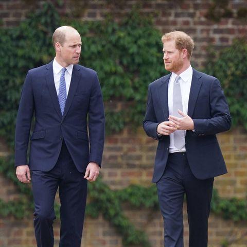 Prinz William und Prinz Harry